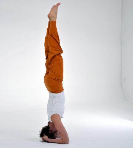 vandana_yoga2 4