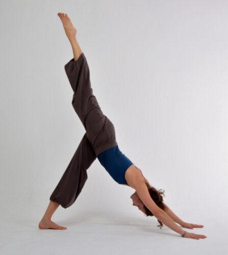vandana_yoga3
